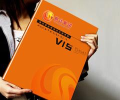 集团公司品牌形象VI