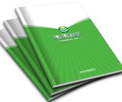 玉禾鲜菜企业宣传画册
